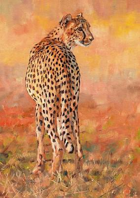 Cheetah Art Print by David Stribbling