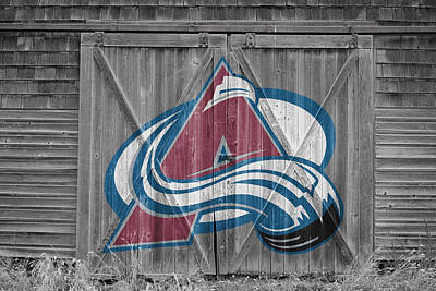 Photograph - Colorado Avalanche by Joe Hamilton
