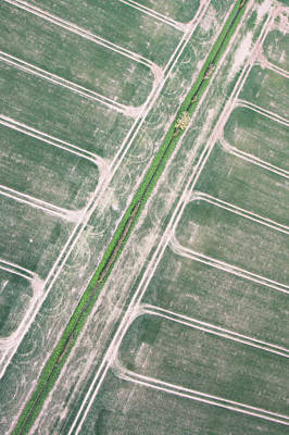 Crop Fields Art Print by Tom Gowanlock