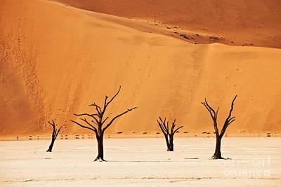 Dead Vlei In Namib Desert Art Print by Juergen Ritterbach
