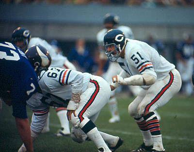 Football Game Photograph - Dick Butkus by Retro Images Archive