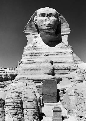 Photograph - Egypt: Great Sphinx by Granger