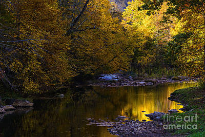 Fall Color Gauley River Headwaters Art Print by Thomas R Fletcher
