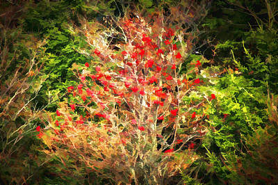 Photograph - Fall Foliage Great Smoky Mountains Painted  by Rich Franco