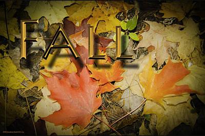 Photograph - Fall by LeeAnn McLaneGoetz McLaneGoetzStudioLLCcom
