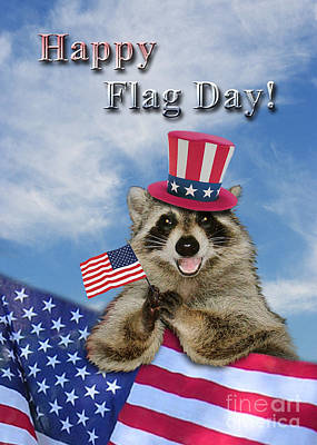 Wildlife Celebration Drawing - Flag Day Raccoon by Jeanette K