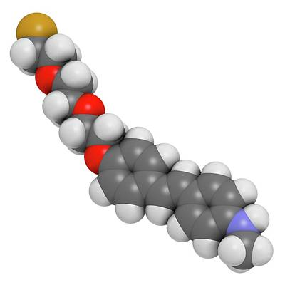 Florbetaben Radiopharmaceutical Molecule Art Print