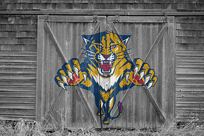 Photograph - Florida Panthers by Joe Hamilton