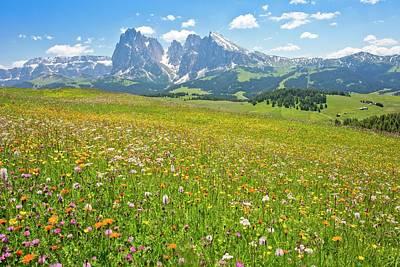 Flowery Alpine Meadow Art Print