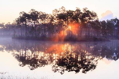 Foggy Sunrise At Long Pine Key Art Print by Jonathan Gewirtz