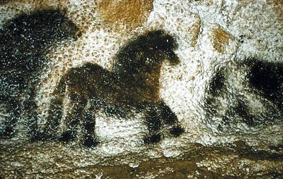 France. Montignac. The Cave Of Lascaux Art Print by Everett