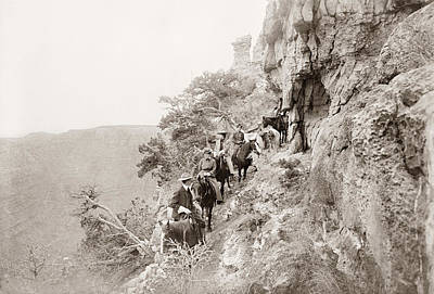 Photograph - Grand Canyon Sightseers by Granger