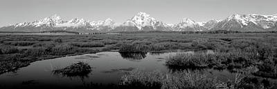 Wetlands Photograph - Grand Teton Park, Wyoming, Usa by Panoramic Images