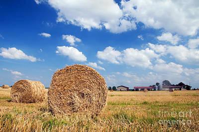Fields Photograph - Haystacks In The Field by Michal Bednarek