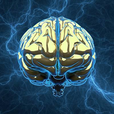 Metallic Blue Photograph - Human Brain by Laguna Design