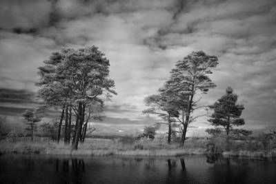 Infrared Picture Of The Nature Area Dwingelderveld In Netherlands Art Print