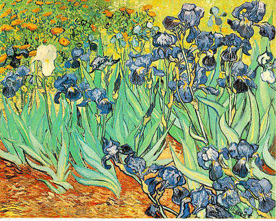 Painting - Irises by Vincent Van Gogh