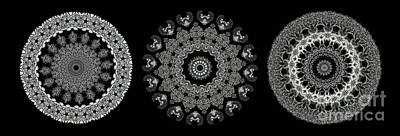 Medallion Photograph - Kaleidoscope Ernst Haeckl Sea Life Series Black And White Set 2  by Amy Cicconi