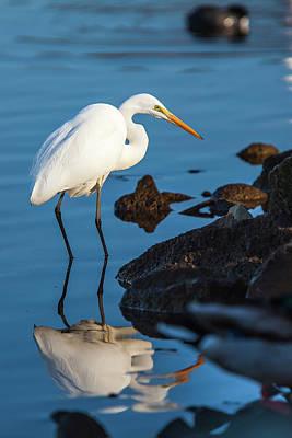 Lake Murray Photograph - Lake Murray San Diego, California by Michael Qualls