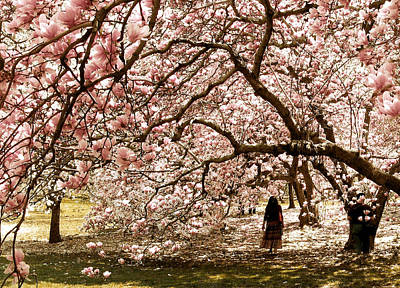Nature Woman Photograph - Magnificent Magnolia by Jessica Jenney