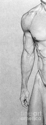 Male Nude Drawing Drawing - Male Nude 4 by Stefano Campitelli