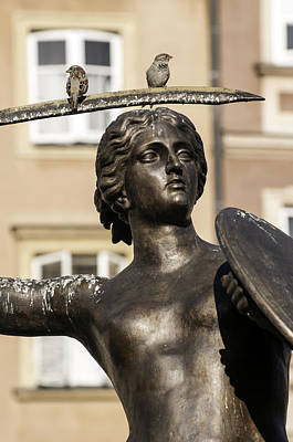 Mermaid Statue In Warsaw. Print by Fernando Barozza
