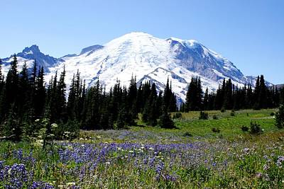 Mt. Rainier Art Print by Jerry Cahill