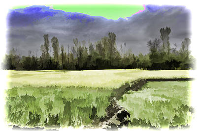 Mustard Fields In Kashmir Art Print