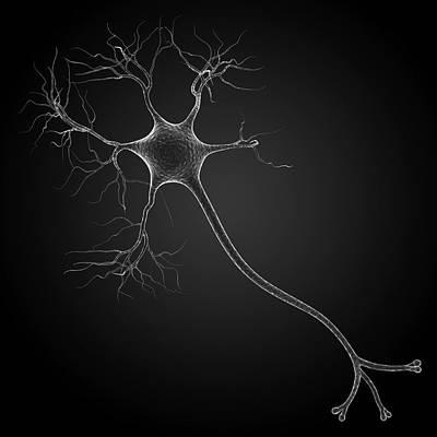 Nerve Cell Art Print by Pixologicstudio