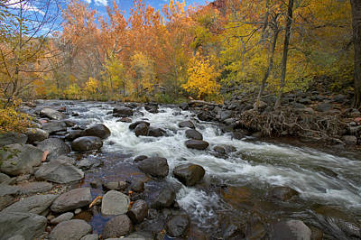Photograph - Oak Creek Canyon by Byron Jorjorian