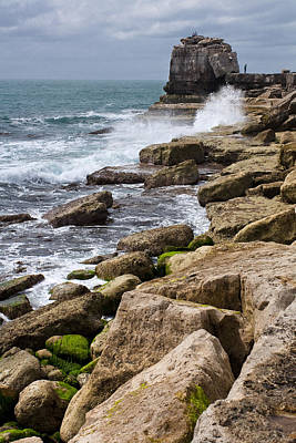 On The Rocks Art Print by Shirley Mitchell