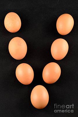 Organic Photograph - Organic Eggs by George Atsametakis