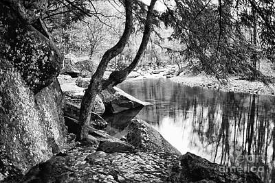 Otter Creek Wilderness Art Print by Thomas R Fletcher