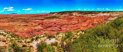 Painted Desert National Park Panorama Original by Bob and Nadine Johnston