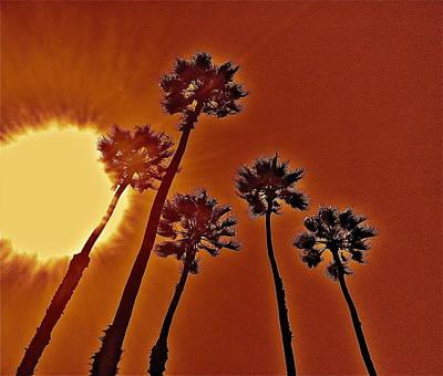4 Palms N Sun Art Print by Joe  Burns