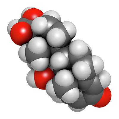 Multiple Sclerosis Photograph - Prednisolone Corticosteroid Drug Molecule by Molekuul