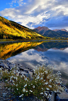 Shark Art - Red Mountain Reflection by Ray Mathis