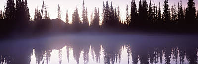 Reflection Of Trees In A Lake, Mt Art Print