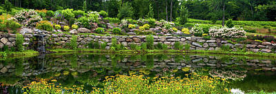 Photograph - Rocks And Plants In Rock Garden by Panoramic Images