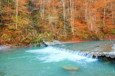 Wilson River Photograph - Romania, Viseu De Sus by Emily Wilson
