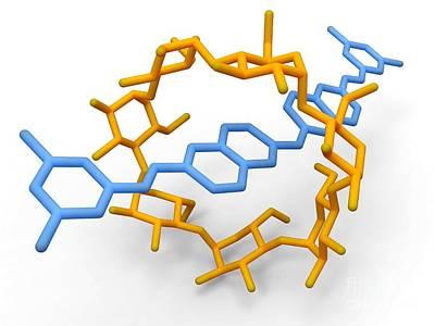 Rotaxane, Molecular Crystal Structure Art Print