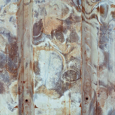 Rusty Metal Print by Tom Gowanlock