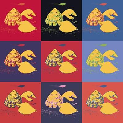 Sea Shells Art Print by Tommytechno Sweden