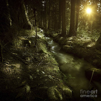 Small Stream In A Forest At Sunset Art Print by Evgeny Kuklev