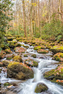 Photograph - Smoky Mountain Stream 1 by Victor Culpepper