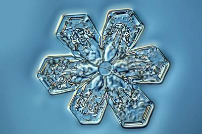 Crystalline Photograph - Snowflake Crystal by Gerd Guenther