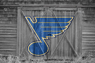 Photograph - St Louis Blues by Joe Hamilton