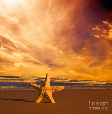 Starfish On The Beach At Sunset Art Print by Michal Bednarek