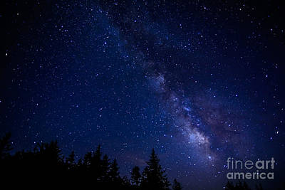 The Milky Way Over Cranberry Wilderness Art Print