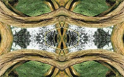 Unnatural 37 Art Print by Giovanni Cafagna